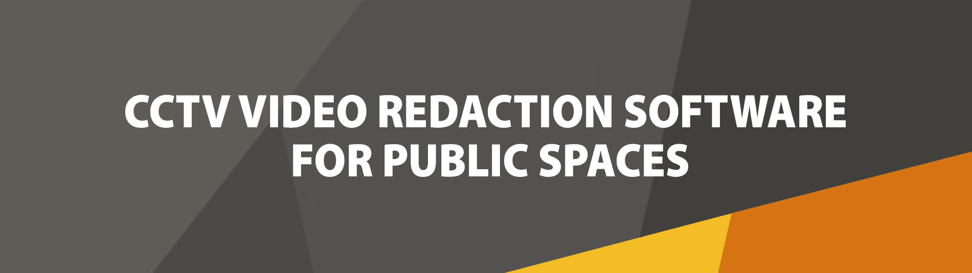 CCTV video redaction software for public spaces